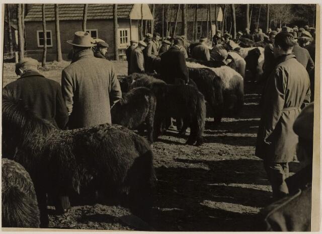 084652 - Ponymarkt