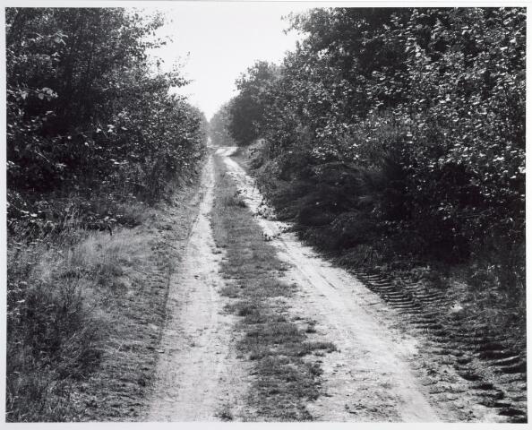 015370 - Landschap. Omgeving van de voormalige spoorlijn Tilburg - Turnhout, in de volksmond ´Bls lijntje´ genoemd