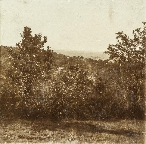 653528 - Natuurfoto, omgeving Valkenburg. (Origineel is een stereofoto.)