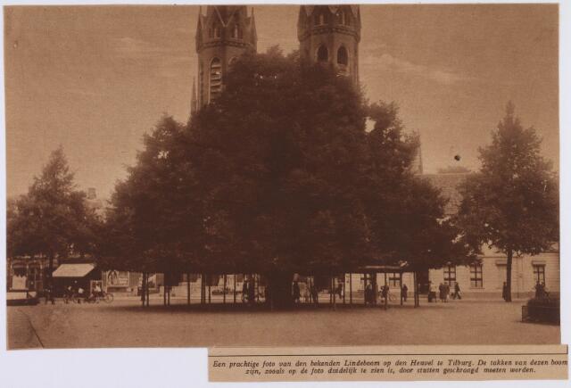 021373 - Tijdschriftfoto van de lindeboom uit 1926