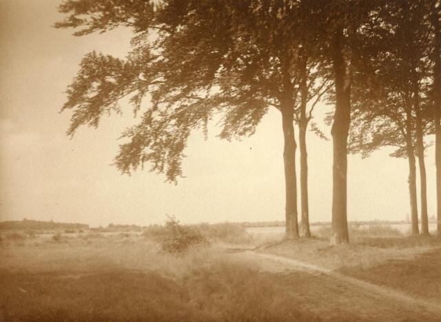 600769 - Landschap in de omgeving van Loon op Zand. Duinen en bossen.Kasteel Loon op Zand. Families Verheyen, Kolfschoten en Van Stratum