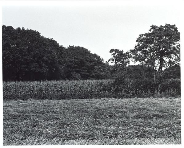 015448 - Landschap. Fase I de Blaak