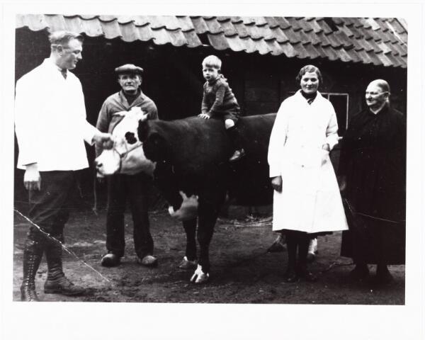 008084 - v.l.n.r.  Toon Voskens, zijn vader Piet, op de koe Walter Vissers, dan Toons zus Anneke Voskens en moeder Marie Voskens-Segers. De koe was de paaskoe die geslacht werd voor de paasdagen. De foto is rond 1934-35 genomen op het erf van de familie Voskens aan de Groenstraat, schuin tegenover het voormalige Voltcomplex. Toon Voskens was slager van beroep en trouwde met Anna Verbeek, een dochter van slager Verbeek uit de Hoefstraat. Toon begon later een slagerij aan de Fatimastraat, nu voortgezet door zijn zoon Piet Voskens.