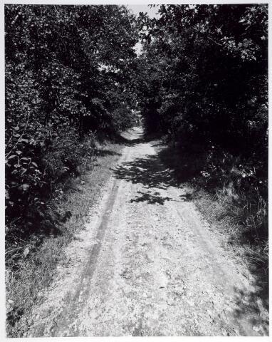 015361 - Landschap. Omgeving van de voormalige spoorlijn Tilburg - Turnhout, in de volksmond ´Bels lijntje´ genoemd