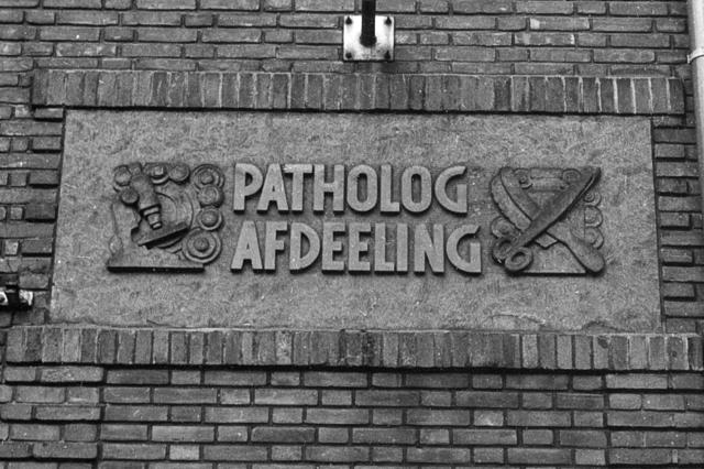 655852 - Elizabeth Ziekenhuis locatie Jan van Beverwijckstraat Tilburg in 1981.