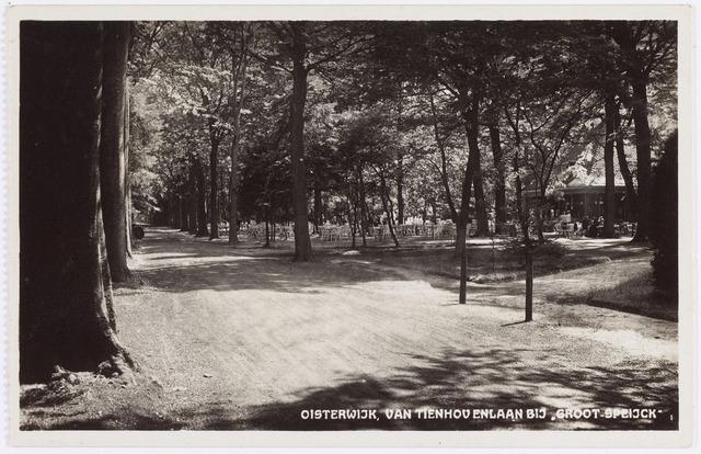 """057642 - Van Tienhovenlaan. Horeca. Door de bomen is het terras van Bosch-Restaurant """"Groot-Speyck"""" zichtbaar."""