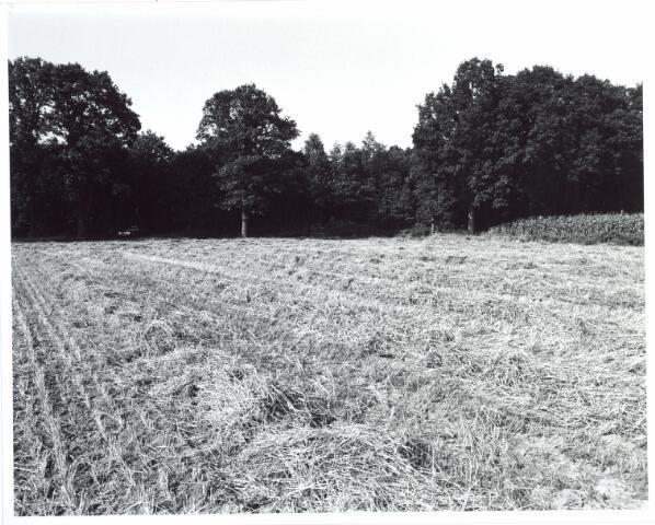 015444 - Landschap. Fase I de Blaak
