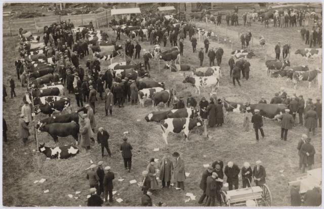 103745 - Tentoonstelling. 2e Paasveetentoonstelling op het particulier terrein van A. van Geloven tegenover het veemarktterrein aan de Enschotsestraat.