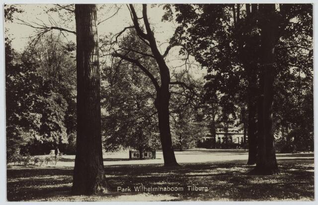 002990 - Wilhelminapark met in het midden op de achtergrond de Wilhelminaboom.