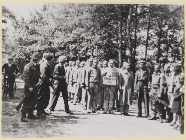 077491 - Tweede wereldoorlog 1940-1945. Duitse krijgsgevangenen moeten de Oisterwijkse bossen zuiveren van explosieven.
