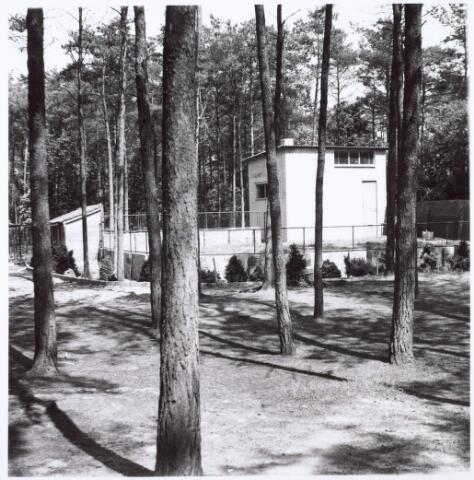 016272 - Dierentuin. Giraffenverblijf in het dierenpark aan de Bredaseweg. Oorspronkelijk heette het Burgers Dierenpark en werd later overgenomen door de firma Van Dijk. In augustus 1973 werden de poorten gesloten