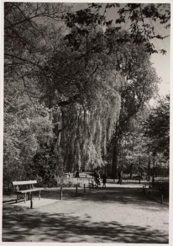 035134 - Uitzicht op het wandelpad in het Wilhelminapark met op de voorgrond een bankje