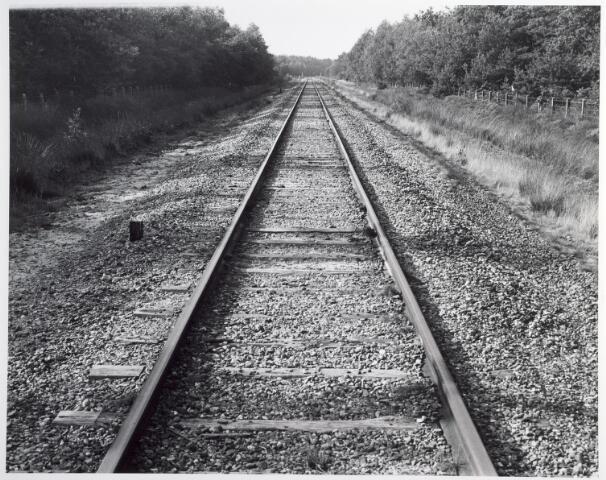 015315 - Landschap. Voormalige spoorlijn Tilburg - Turnhout, in de volksmond ´Bels lijntje` genoemd. Op Nederlands grondgebied is het thans een fietspad