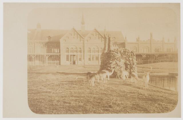 078559 - Patronaatsgebouw, achterzijde.