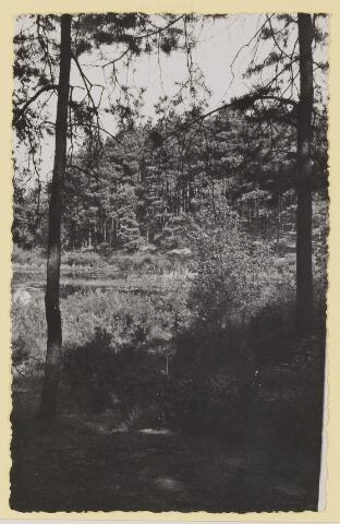 075347 - Serie ansichten over de Oisterwijkse Vennen.  Ven: Wolfsputven