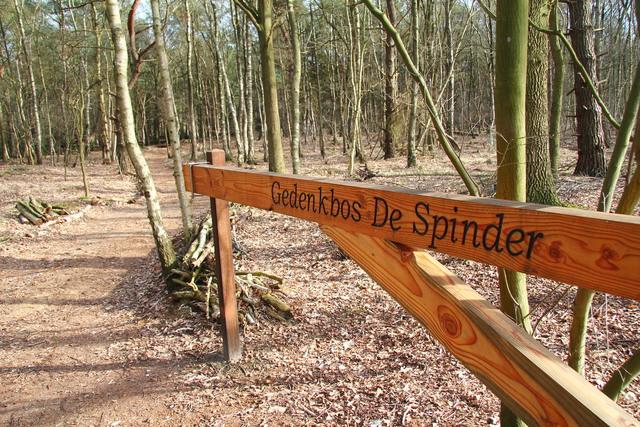 658292 - Gedenkbos De Spinder in Loon op Zand.