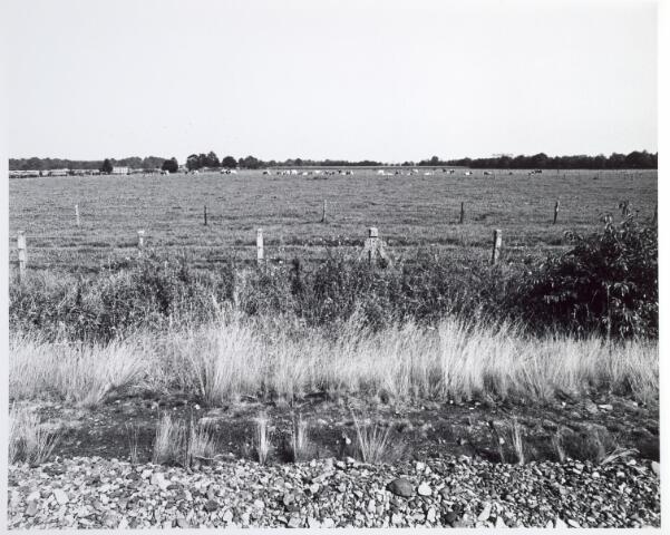 015339 - Landschap. Omgeving van de voormalige spoorlijn Tilburg - Turnhout, in de volksmond ´Bels lijntje´ genoemd