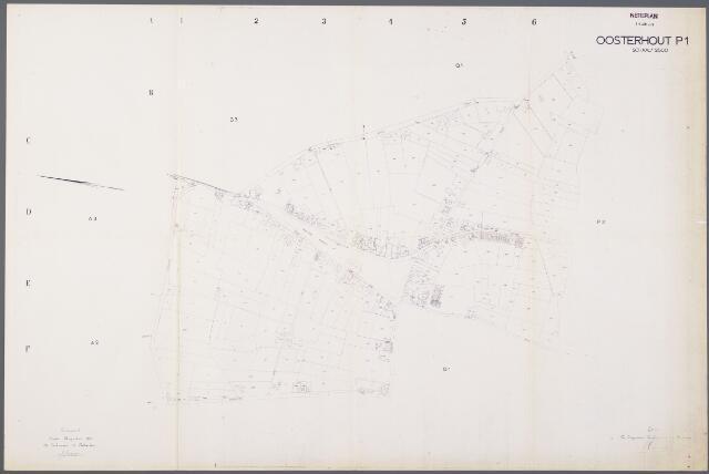 104950 - Kadasterkaart. Kadasterkaart / Netplan Oosterhout. Sectie P1. Schaal 1: 2.500