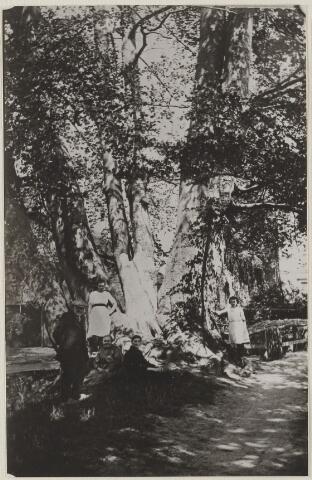 """058643 - Brouwersdijk. Boom achter boerderij van de fam. Timmermans ( In de volksmond """"de Kabouterboom"""" genoemd)  Voor de boom staat Dennis Timmermans, twee dochters van Cees Blom, Jaan Blom en Jaan Kuypers."""