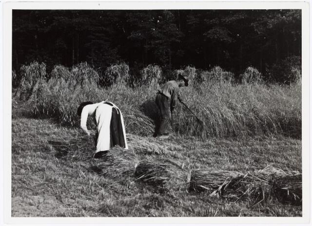 008543 - Man en vrouw die koren maaien en binden, gefotografeerd door Henri Berssenbrugge (1873-1959) in 1904.