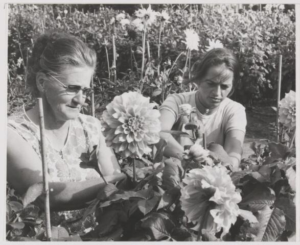 082174 - Floralia tuin Gilze met Mevrouw Anna de Bruijn-Hendrickx en Mieke Appels-vd Heiden