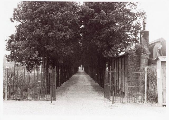 034101 - Oprijlaan Kerkhof aan de Jac. van Vollenhovenstraat, voorheen Heikantsebaan