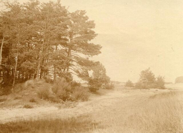 600767 - Landschap in de omgeving van Loon op Zand. Duinen en bossen.Kasteel Loon op Zand. Families Verheyen, Kolfschoten en Van Stratum