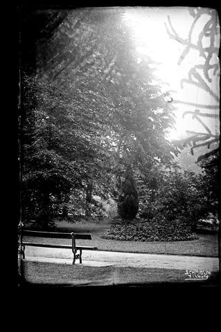 654901 - sfeerfoto van het Wilhelminapark
