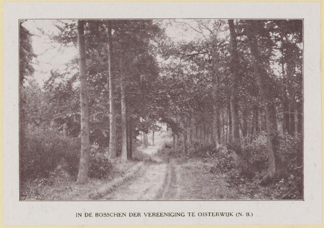 075367 - Serie ansichten over de Oisterwijkse Vennen.  Ven: Bos van  de vereniging.