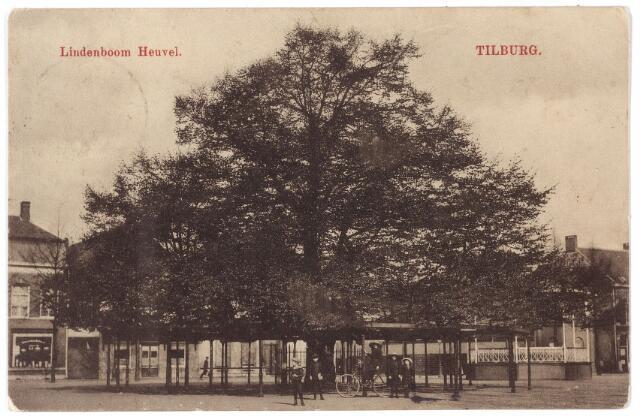 000931 - Lindeboom op de Heuvel.