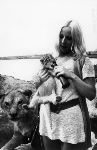 1238_F0223 - Vrouw geeft een leeuwenwelpje een fles naast een leeuwin.