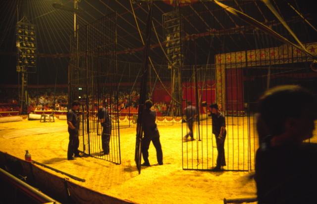 656900 - De piste van American Circus te Tilburg. De kooi voor de wilde circusdieren wordt opgebouwd tijdens de voorstelling.
