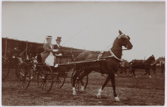 103844 - Tentoonstelling Stad Tilburg 1909 gehouden van 15 juli - 8 augustus 1909  Handel Nijverheid en Kunst. Het tentoonstelling-terrein was gelegen aan de 1e Herstalse Dwarsstraat (tussen Boomstraat en Industriestraat). Concours hipique.