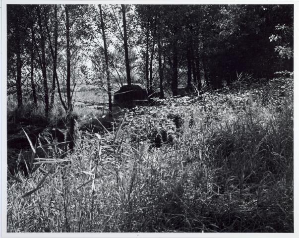 015387 - Landschap. Omgeving van de voormalige spoorlijn Tilburg - Turnhout, in de volksmond ´Bels lijntje´ genoemd