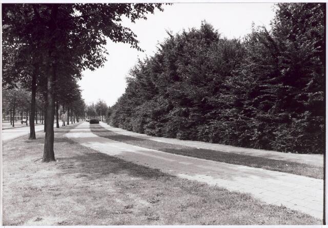 030594 - Rueckertbaan