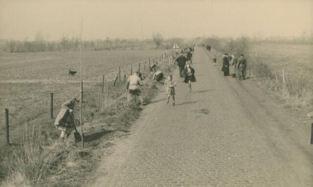 066180 - Boomplantdag in Kaatsheuvel.