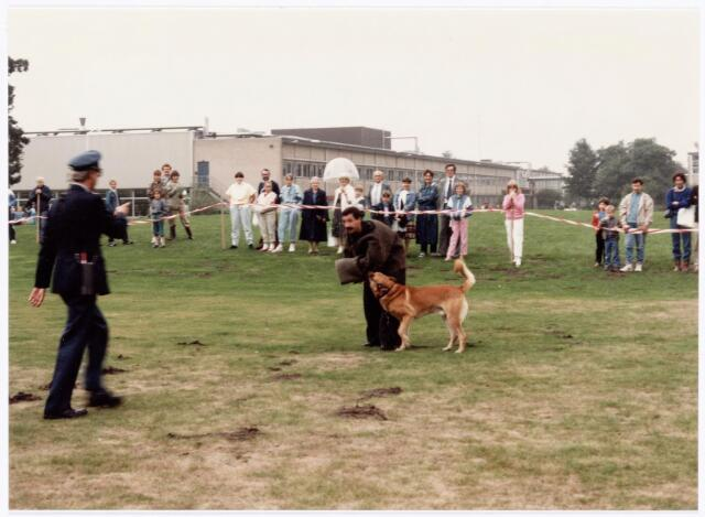 """039305 - Volt. Noord. Hulpafdelingen, Portiers, Bewaking. Volt bewaking had vanaf ca. 1980 enkele bewakingshonden tot hun beschikking.   Een """"pakwerker"""" in actie bij een demonstratie met bewakingshonden op de """"Open Dag"""" op 15 september 1984 t.g.v. het 75 jarig bestaan van Volt.  De bewakingsbeambte is Jan van Dongen."""