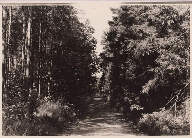 027873 - Oude Warande, wandelweg