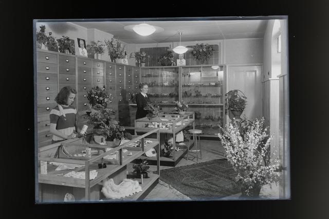 654661 - Interieur. Winkel in kinderkleding en speelgoed.