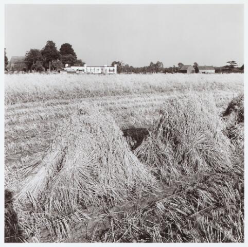 062430 - Landbouw. Boerderij aan het Baaneind 14 te Heukelom, voorheen Berkel-Enschot; gezicht op bungalow van Kriekaard
