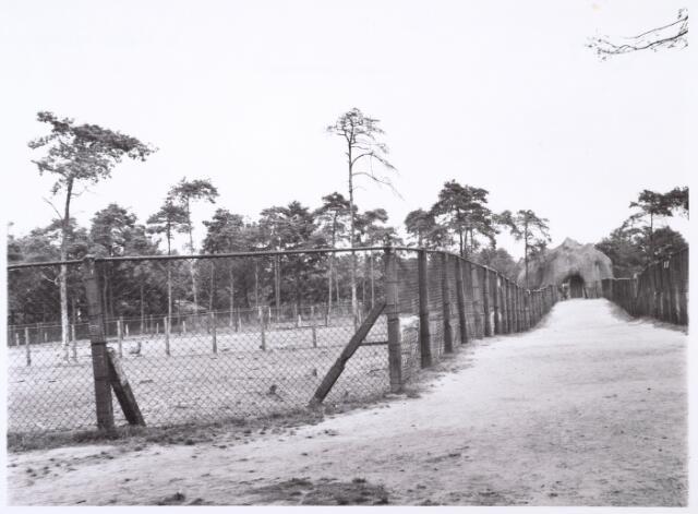 016279 - Dierentuin. Dromedarissenverblijf in het dierenpark aan de Bredaseweg. Oorspronkelijk heette het Burgers Dierenpark en werd later overgenomen door de firma Van Dijk. In augustus 1973 weren de poorten gesloten