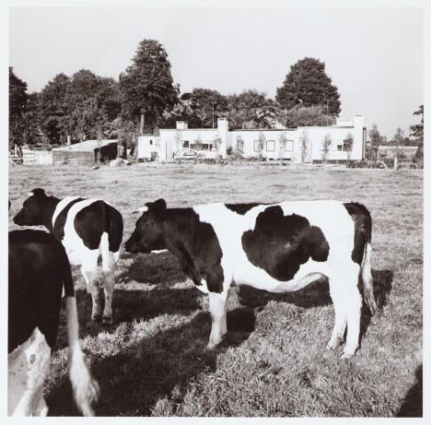 062429 - Landbouw. Boerderij aan het Baaneind 14 te Heukelom, voorheen Berkel-Enschot; gezicht op bungalow van Kriekaard