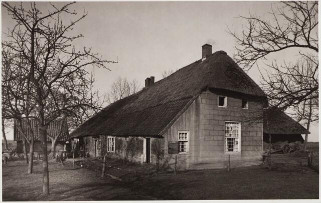 029619 - Tongerlose Hoef aan de Reitse Hoevenstraat