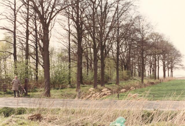 650849 - Gebied waar de latere woonwijk 'De Reeshof' is gebouwd.