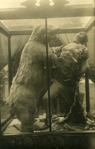 065986 - Kermis.De dierentemster overvallen door een beer. In het Nederlands Panopticum kon je allerlei wassenbeelden zien.