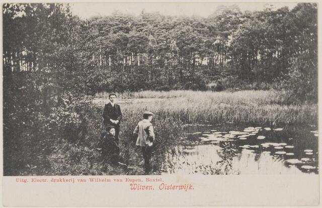 075314 - Serie ansichten over de Oisterwijkse Vennen.  Ven: Witven.