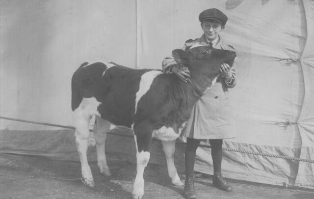 063902 - Frans van de Put, geboren te Tilburg op 9 oktober 1916, zoon van slager Frans van de Put en Adriana Maria van Puijenbroek. Hij trouwde met Toos van Dun en overleed te Oisterwijk op 10 januari 1986. De foto werd genomen tijdens een veekeuring.
