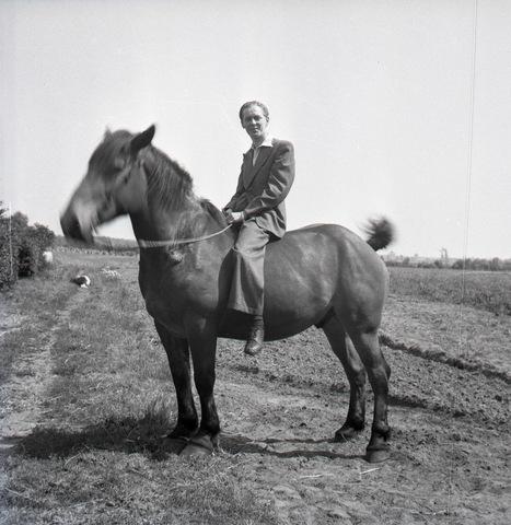 654730 - Man te paard