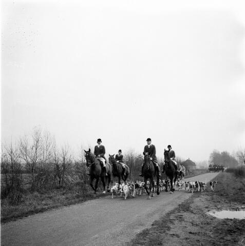 050258 - Hubertus slipjacht. Tilburgse rij en jachtvereniging, Hippos.