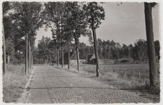 078598 - Udenhout. Weg naar Udenhoutseduinen. De Schoorstraat, tegenover de poort van kasteel De Strijdhoef.
